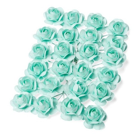 Roses menthe x24
