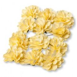 Pivoines jaune x12