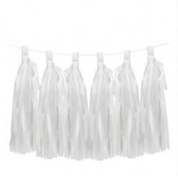 6 Tassels blanches